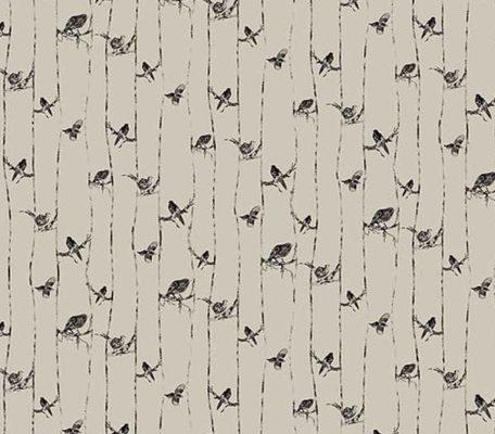 eilis galbraith birds design